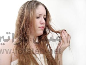 هل يعاني شعرك من الجفاف؟